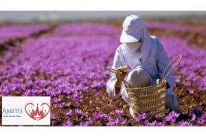 Differences between Iranian Saffron and other countries